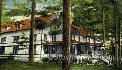 The Pines Hotel - Sacandaga, New York NY Postcard