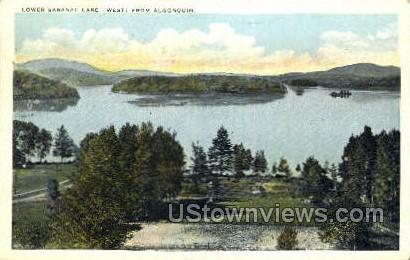 Algonquin - Saranac Lake, New York NY Postcard
