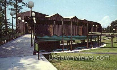 Saratoga Performing Arts Center - Saratoga Springs, New York NY Postcard