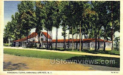 Ashgrove Farms - Saratoga Springs, New York NY Postcard