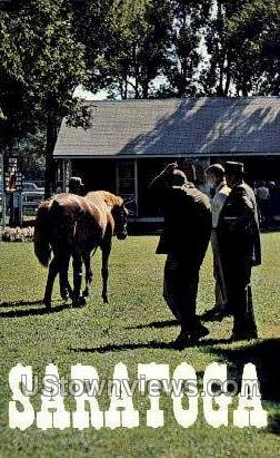 Fasig-Tipton Co - Saratoga Springs, New York NY Postcard