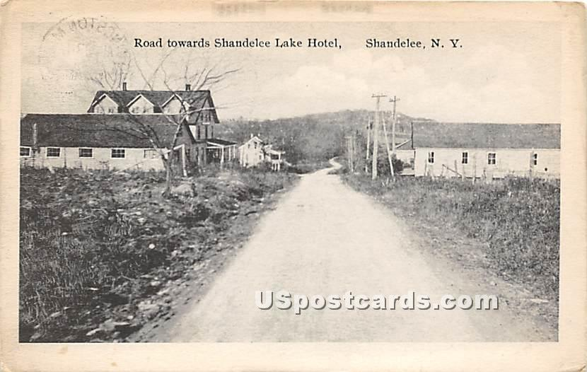 Road Towards Shandelee Lake Hotel - New York NY Postcard