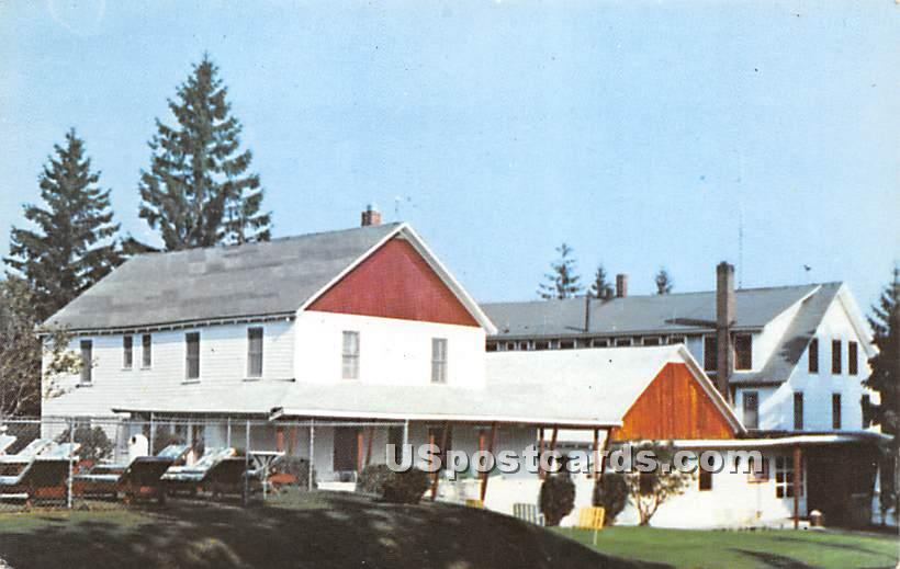 Lake View Hotel - Shandelee, New York NY Postcard