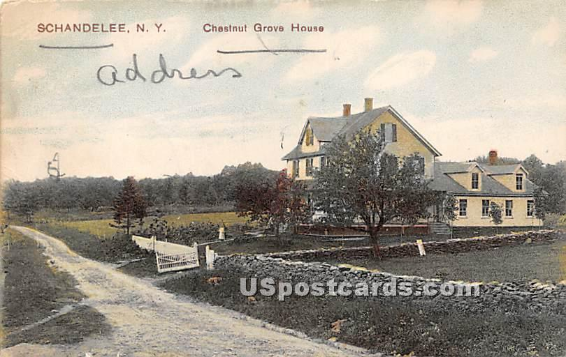 Chestnut Grove House - Shandelee, New York NY Postcard