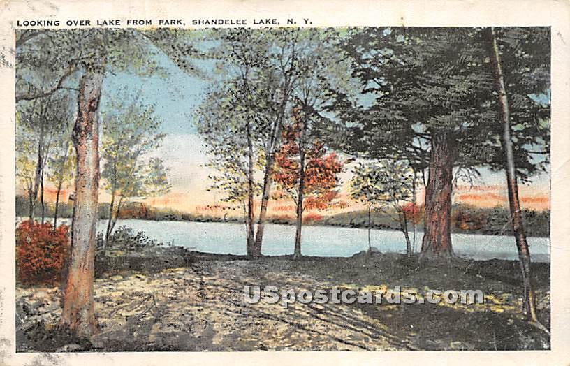 Looking Over Lake from Park - Shandelee, New York NY Postcard
