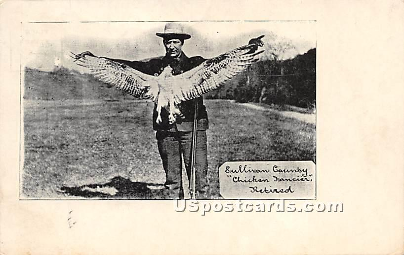 Chicken Fancier Retired - Shandelee, New York NY Postcard