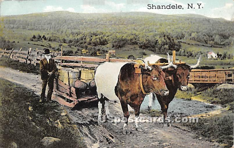 Rapid Transit - Shandelee, New York NY Postcard