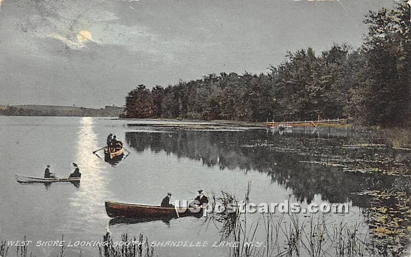 West Shore Looking North - Shandelee, New York NY Postcard