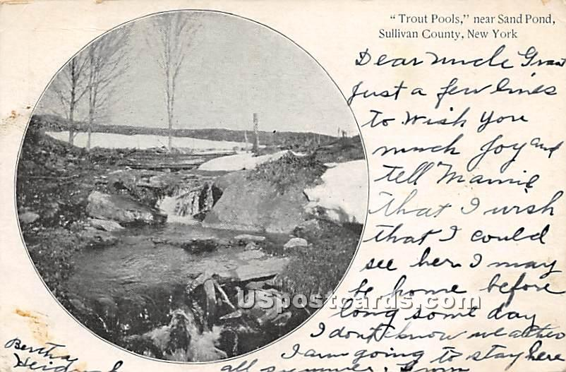 Trout Pools - Shandelee, New York NY Postcard