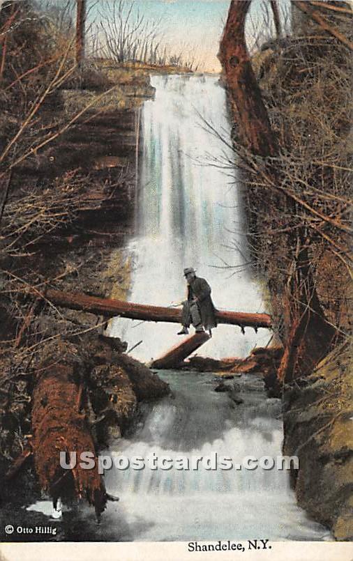 Falls - Shandelee, New York NY Postcard
