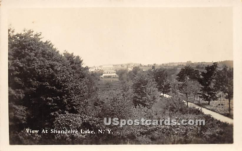 Birds Eye View - Shandelee, New York NY Postcard