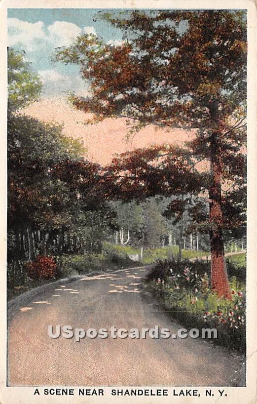 Road Scene - Shandelee, New York NY Postcard