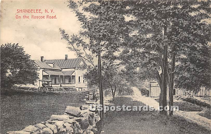 On the Roscoe Road - Shandelee, New York NY Postcard