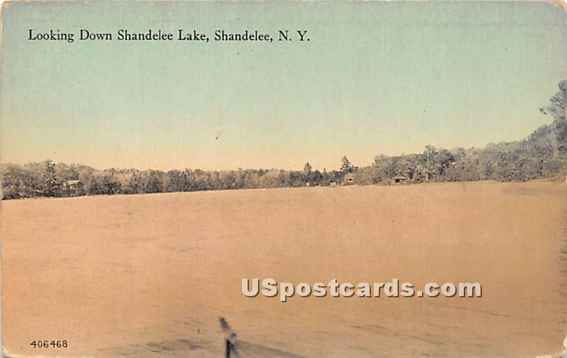 Looking Down Shandelee Lake - New York NY Postcard