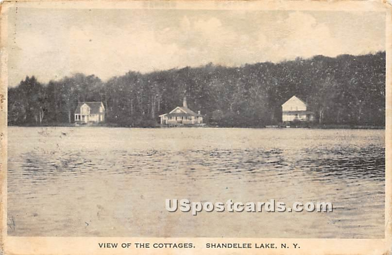 View of the Cottages - Shandelee, New York NY Postcard