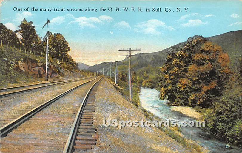 Trout Streams along the O & W R R - South Fallsburg, New York NY Postcard