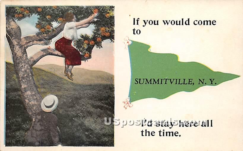 If you would come - Summitville, New York NY Postcard