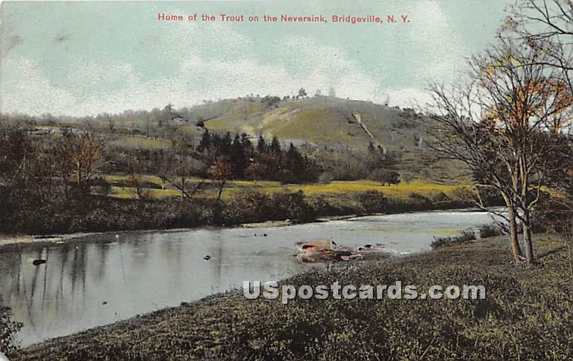 Home of the Trout on the Neversink - Sackett Lake, New York NY Postcard