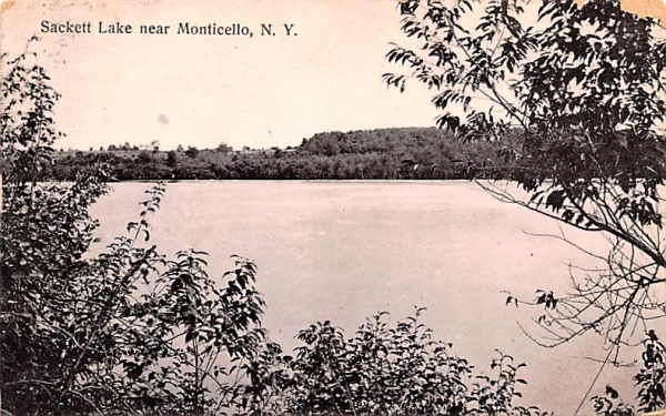 Lake View Sackett Lake, New York Postcard