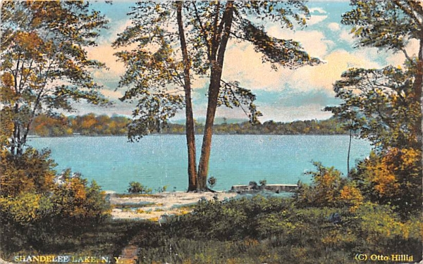 Shandelee Lake New York Postcard