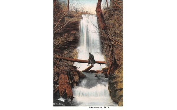 Falls Shandelee, New York Postcard