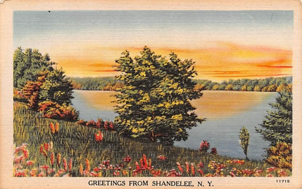 Greetings From Shandelee, New York Postcard