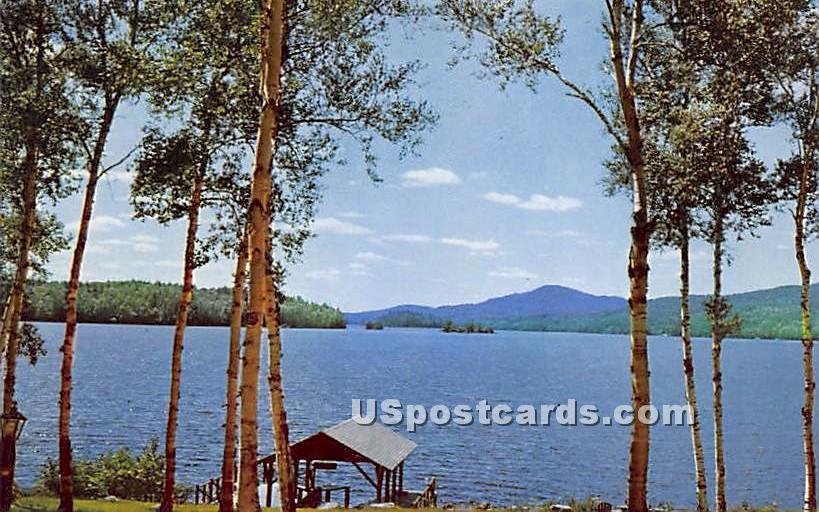White Birches, Lower Saranac Lake - New York NY Postcard