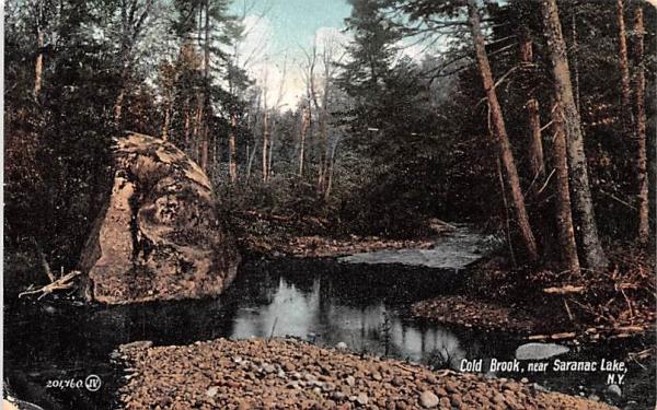 Cold Brook Saranac Lake, New York Postcard