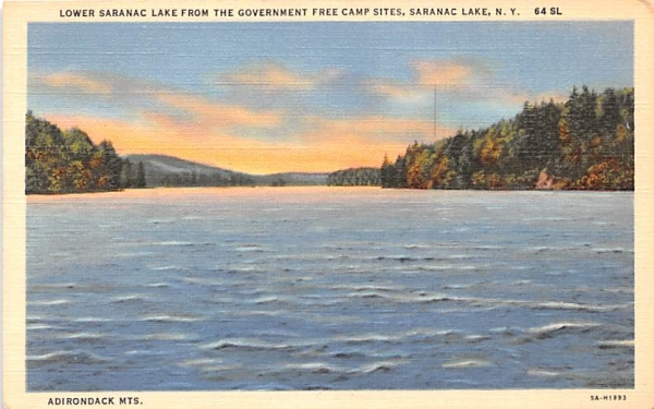 From Government Free Camp Sites Saranac Lake, New York Postcard