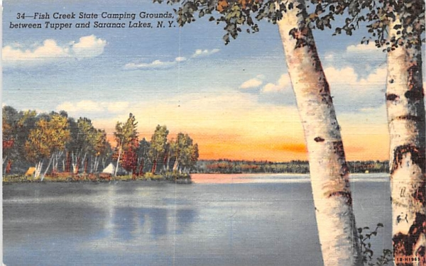 Fish Creek State Camping Grounds Saranac Lake, New York Postcard