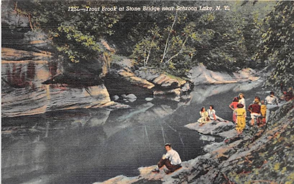 Trout Brook Schroon Lake, New York Postcard