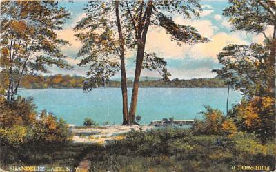 Shandelee Lake New York Postcard