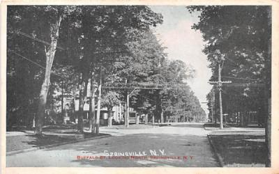 Buffal Street Springville, New York Postcard