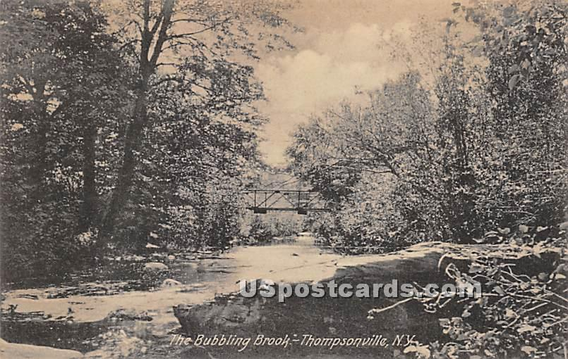 Bubbling Brook - Thompsonville, New York NY Postcard
