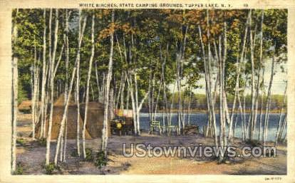 White Birches, State Camping Grounds - Tupper Lake, New York NY Postcard