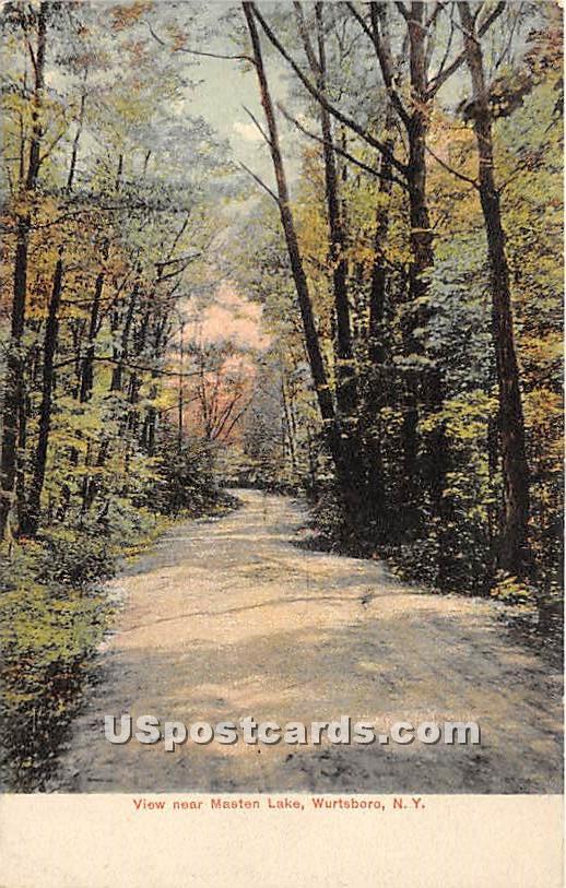 View near Masten Lake - Wurtsboro, New York NY Postcard