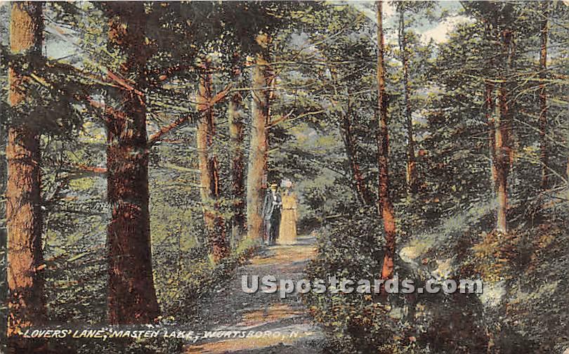 Lovers' Lane - Wurtsboro, New York NY Postcard