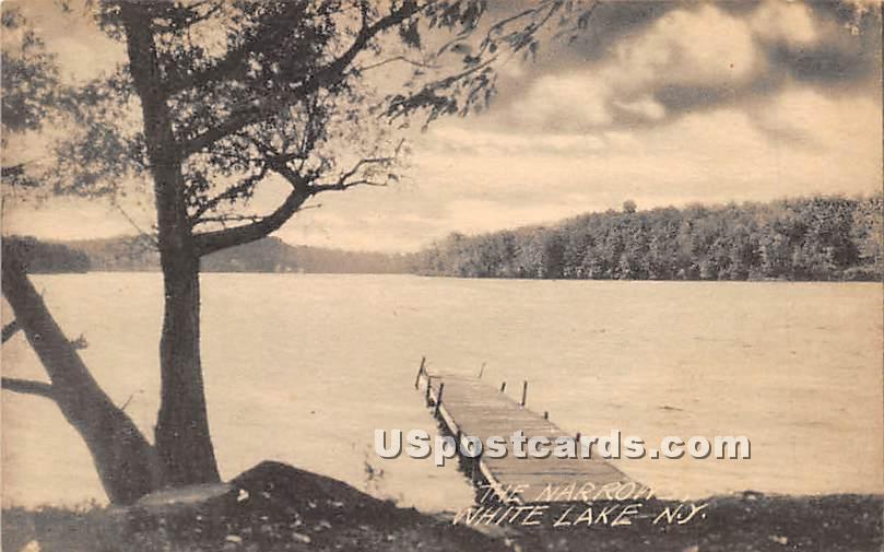 The Narrows - White Lake, New York NY Postcard