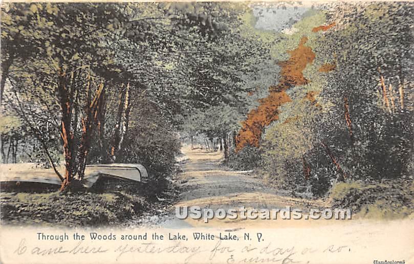 Through the Woods around the Lake - White Lake, New York NY Postcard