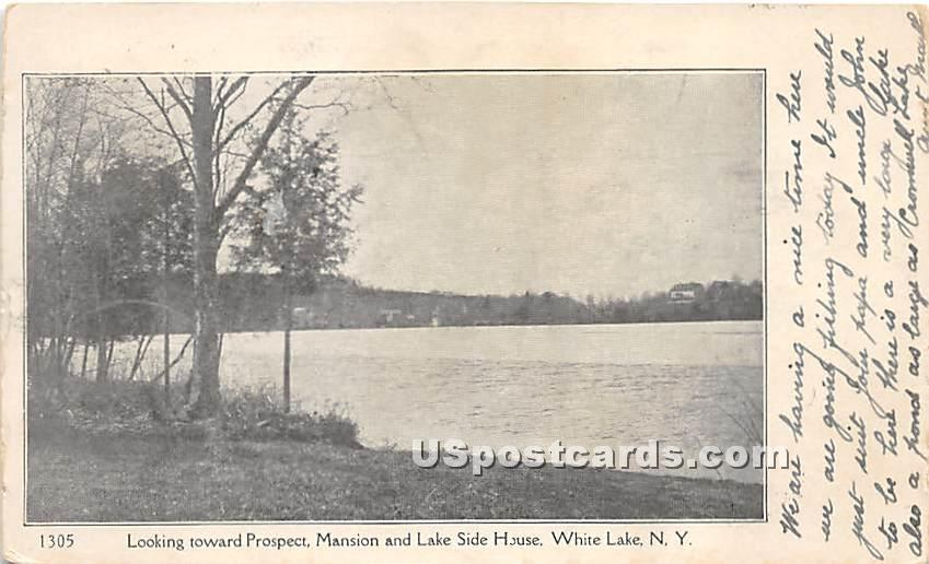 Looking toward Prospect, Mansion and Lake Side House - White Lake, New York NY Postcard