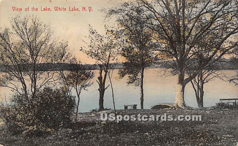 View of the Lake - White Lake, New York NY Postcard
