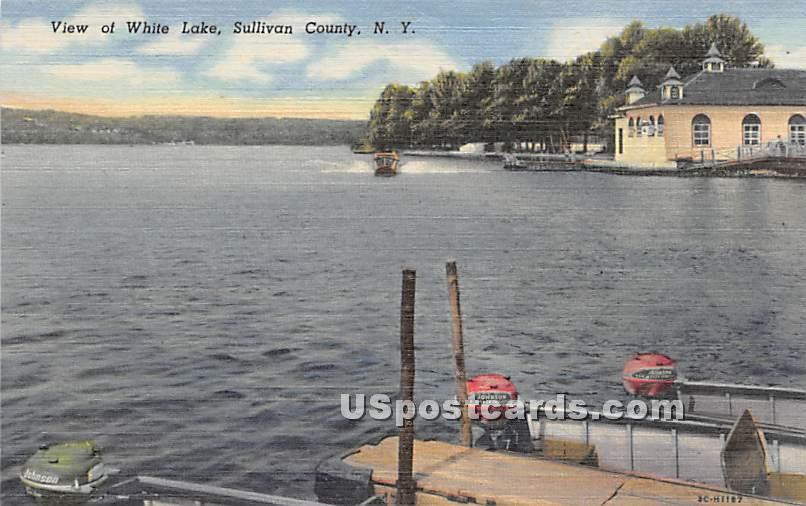 View of White Lake - New York NY Postcard