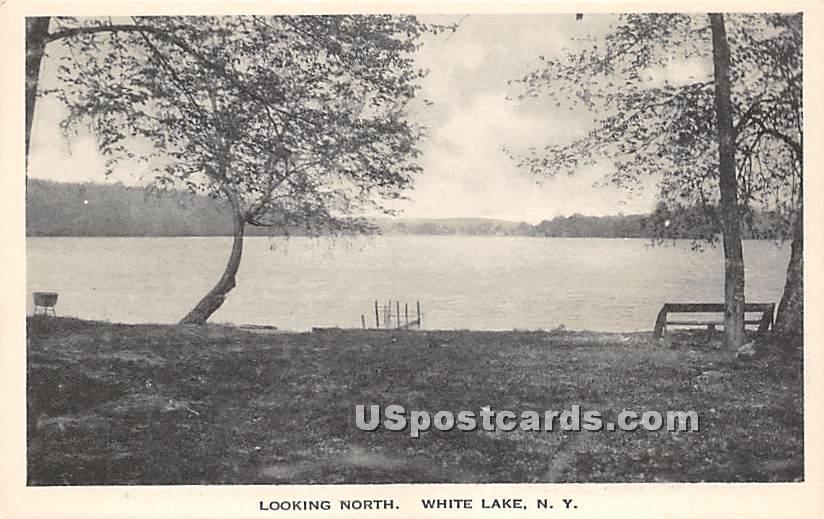 Looking North - White Lake, New York NY Postcard