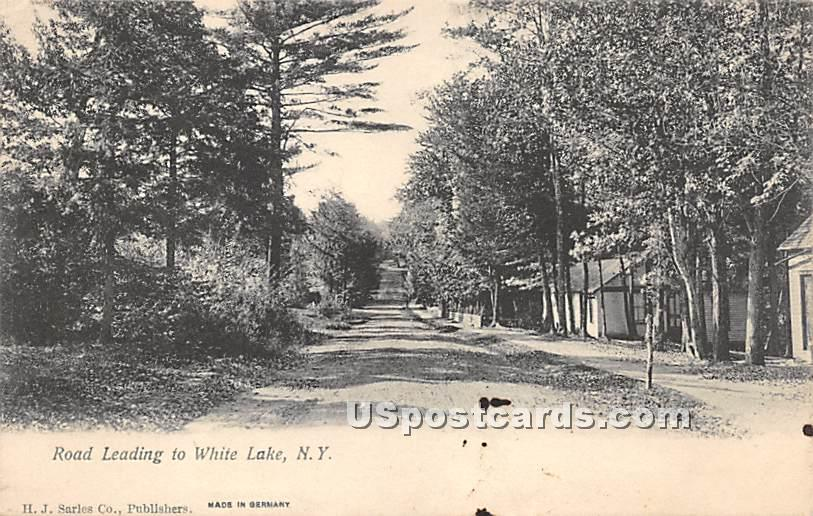 Road Leading to White Lake - New York NY Postcard