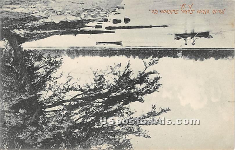 North White Lake - New York NY Postcard