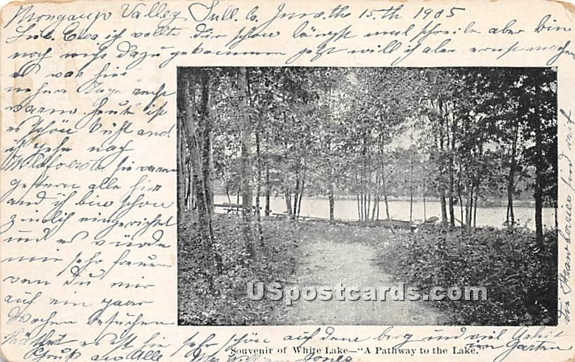 A Pathway to the Lake - White Lake, New York NY Postcard