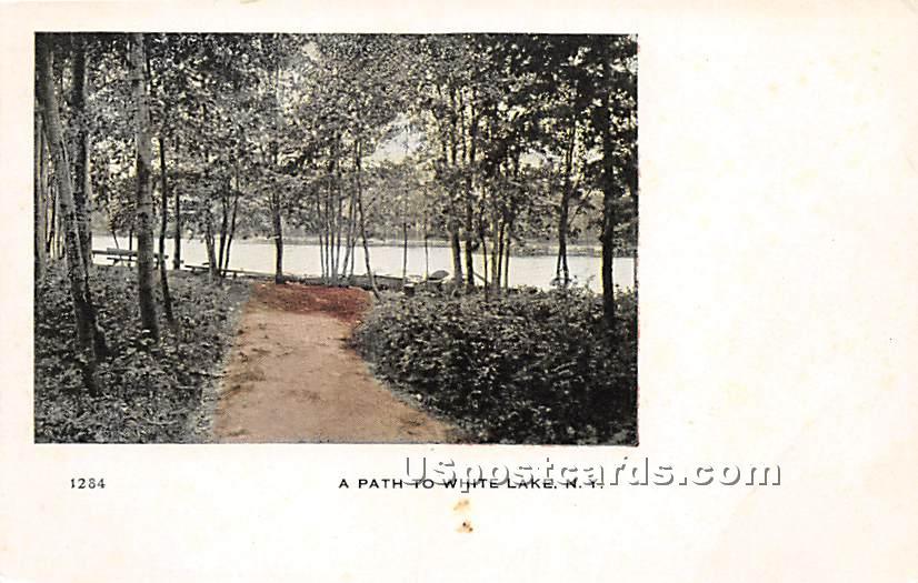 A Path - White Lake, New York NY Postcard