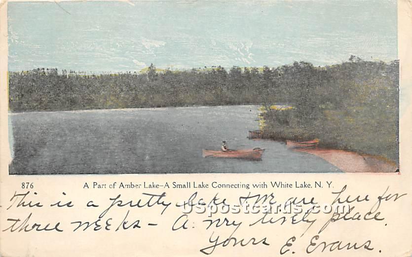 Part of Amber Lake - White Lake, New York NY Postcard