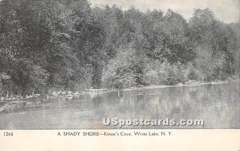 Shady Shore - White Lake, New York NY Postcard