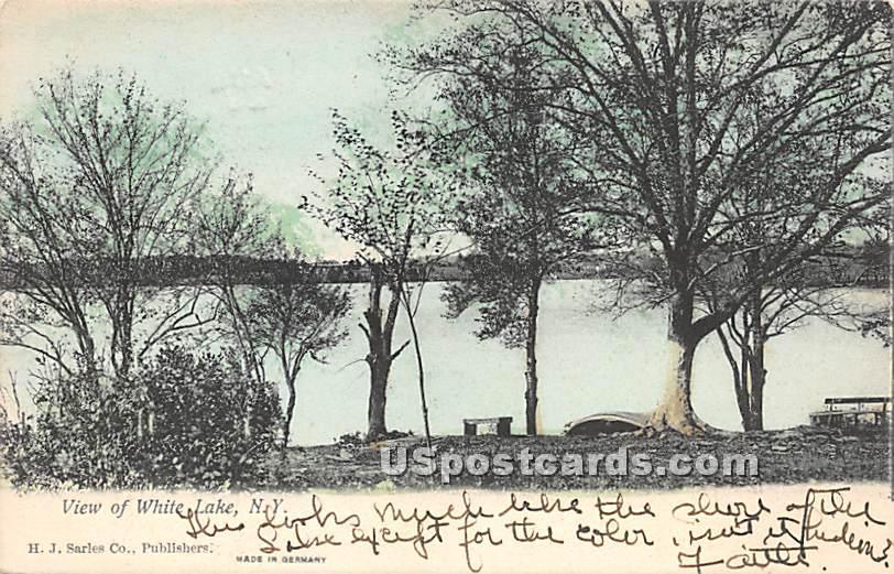 Lake View - White Lake, New York NY Postcard